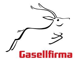 gasellfirma RT Plaan OÜ